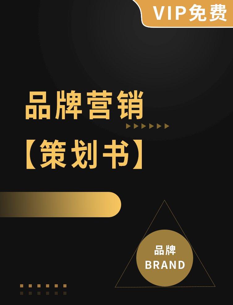 品牌营销策划书专题